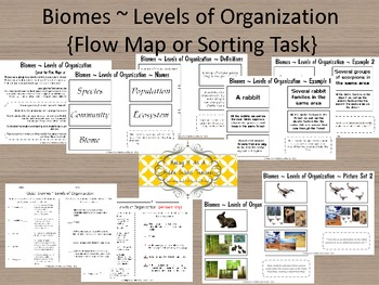 Section 4 3 Biomes Answer Key http://www.teacherspayteachers.com/Product/Holiday-Writing-Activity-FallLooks-Feels-Sounds