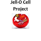 Plant Cell Project with Jello http://www.teacherspayteachers.com/Product/Venn-Diagram-Plant-and-Animal-Cells-Biology-7-12