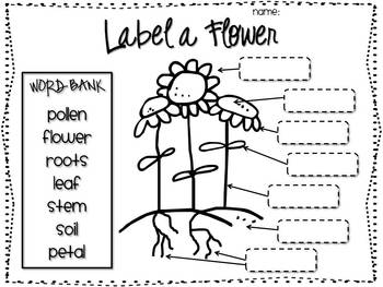 Adjectives Describing A Castle   Printable Worksheet moreover Castles History lesson plans for KS1  Year 1 and Year 2 in addition Castles  History   Norman Castles furthermore Castle Diagram Ks1   Electrical Wiring Diagram • besides  further Labels worksheet ks1 moreover Castles for primary children   Castles homework help furthermore The Meval Castle  Four Different Types   History in addition EYFS and KS1 Castle teaching resources   Free Early Years   Primary as well  furthermore  furthermore MEVAL QUIZ   meval castles in addition The Key Features and Parts of a Castle   Primary Facts together with Labelled Diagram Of A Castle   castle  castles  diagram  label moreover  additionally Castles  Overview. on label a castle worksheet ks1