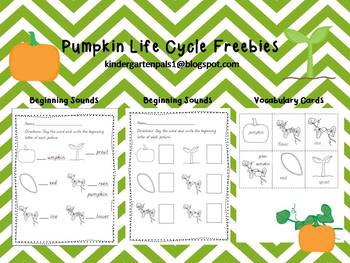 ... Two different beginning sounds worksheets. By Kindergarten Pals. FREE