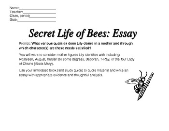 Essay On Secret Life of Bees